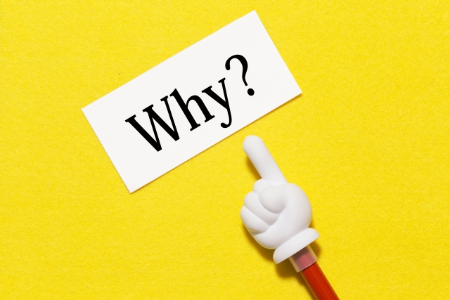 なぜ初心者には「せどり」が一番良いビジネスなのか?